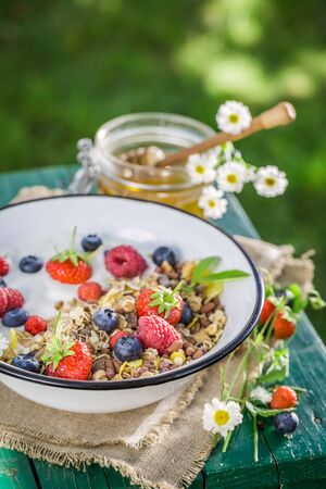 wild oats: Tasty breakfast with yogurt and berry fruits in sunny day
