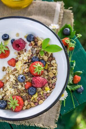 wild oats: Tasty breakfast with berry fruits and yogurt in garden Stock Photo
