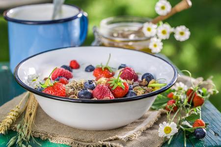 breakfast garden: Tasty breakfast with berry fruits and yogurt in garden Stock Photo