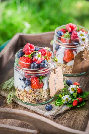 breakfast garden: Healthy breakfast with berry fruits and yogurt in garden