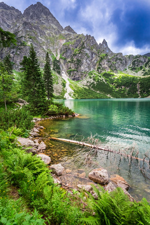 Beautiful pond in the mountains at summer, Poland