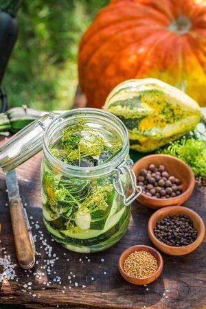 cucurbit: Homemade zucchini pickling in garden Stock Photo