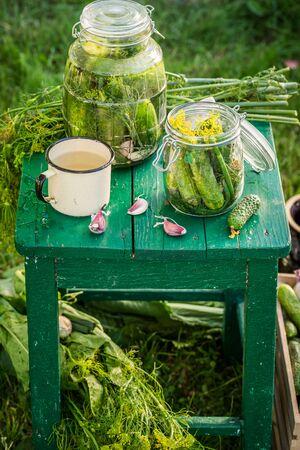 gherkins: Homemade gherkins in jar in summer garden
