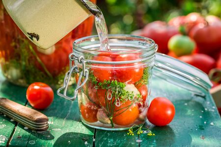 home grown: Pickled tomatoes with home grown ingredients Stock Photo