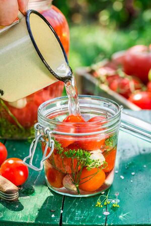 pickling: During pickling tomatoes in the countryside