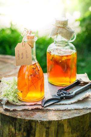 witchdoctor: Homemade tincture with honey, linden and alcohol in garden