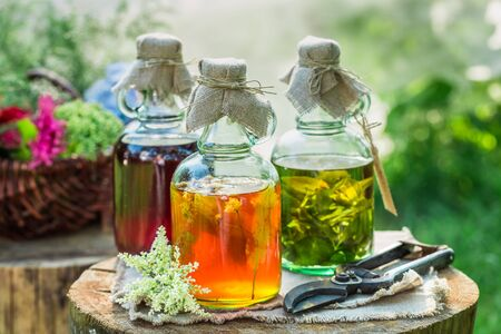 witchdoctor: Healing tincture in bottles as natural medicine in garden