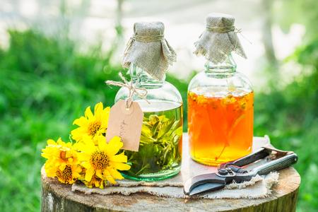 witchdoctor: Homemade tincture made of alcohol and honey in garden Stock Photo