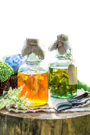 witchdoctor: Healing herbs in bottles as natural medicine in garden Stock Photo