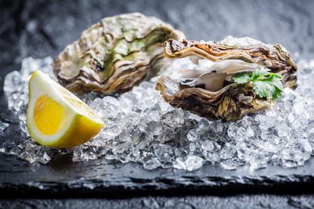 Lekkere oesters op ijs