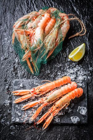 scampi: Fresh scampi on crushed ice