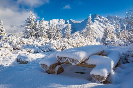 zakopane: Snow covered bench on a trail in Tatra Mountains, Poland