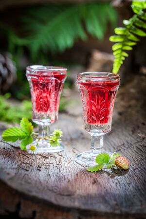 'wild strawberry: Sweet liqueur with wild strawberry and alcohol