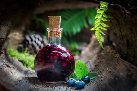 witchdoctor: Tasty liqueur in a bottle with blueberries and alcohol