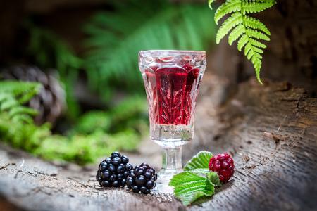 アルコールとブラックベリーで作られた自家製のリキュール 写真素材