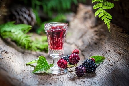 witchdoctor: Homemade liqueur made of blackberries and alcohol