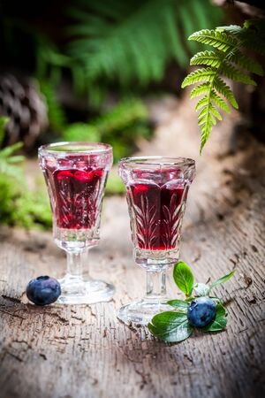 witchdoctor: Sweet liqueur with alcohol and blueberries