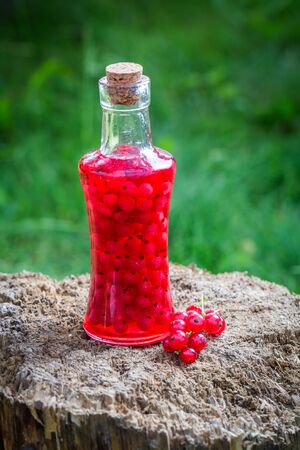 Sweet liqueur made of redcurrants and alcohol Stock Photo