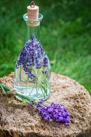 Healthy tincture made of lavender Stock Photo