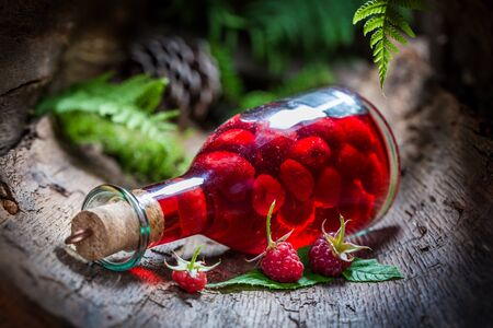 witchdoctor: Homemade raspberries liqueur made of fruits and alcohol