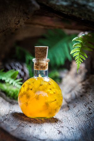 witchdoctor: Sweet liqueur with linden and honey