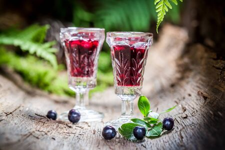 witchdoctor: Tasty liqueur with alcohol and blueberries Stock Photo