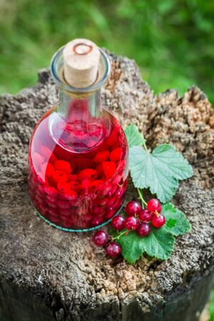 witchdoctor: Tasty liqueur made of redcurrants and alcohol
