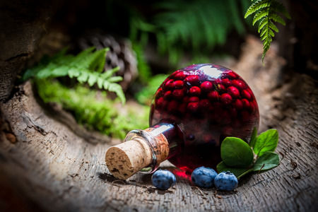 Homemade liqueur with blueberries and alcohol Stock Photo