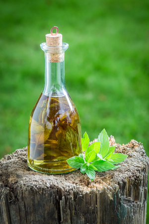 lemon balm: Healthy and homemade liqueur with alcohol and mint