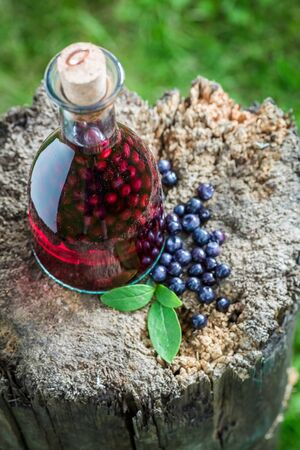Tasty liqueur in a bottle with alcohol and blueberries