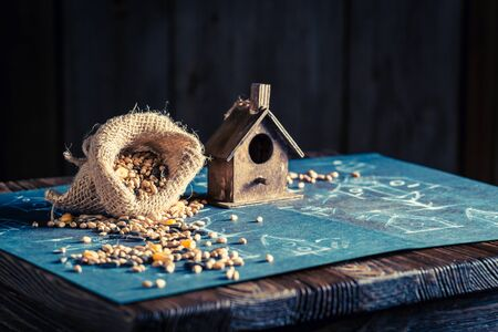 Cute home for birds and construction plan Stock Photo