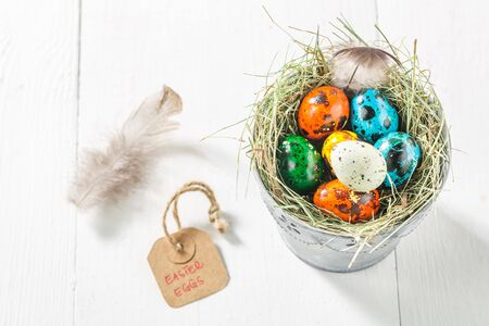 quail: Quail eggs for Easter with feathers and hay Foto de archivo