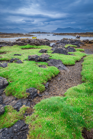 Green coast in Scotland at low tide in summer