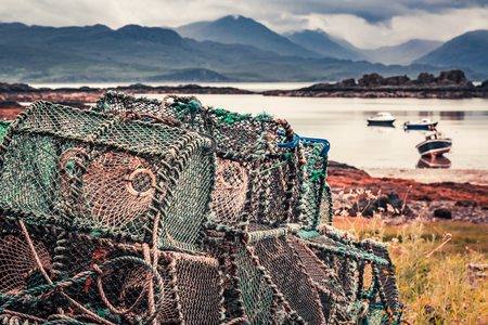 lobster boat: Colored cage for lobster on shore in summer, Scotland