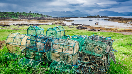 Colored cage for lobster on shore, Scotland, United Kingdom Stock Photo
