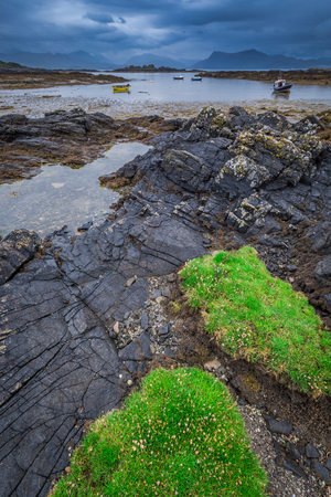 Green coastline and black stones at low tide, Scotland Stock Photo