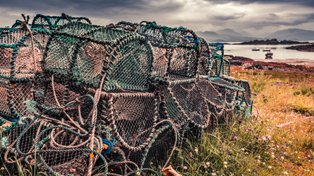 Old cage for lobster on shore in summer, Scotland