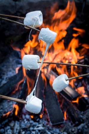 Sweet and hot marshmallows on stick and bonfire