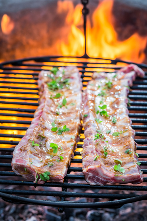 Hot ribs with thyme and spices on grill