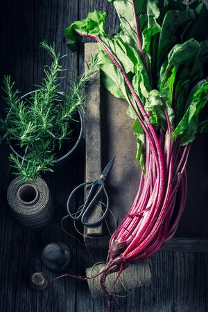 harvested: Freshly harvested beetroots in a rustic kitchen