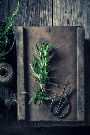 Fresh and intensive rosemary on a wooden box Reklamní fotografie