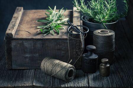Fresh and intensive green herbs on a wooden box Reklamní fotografie