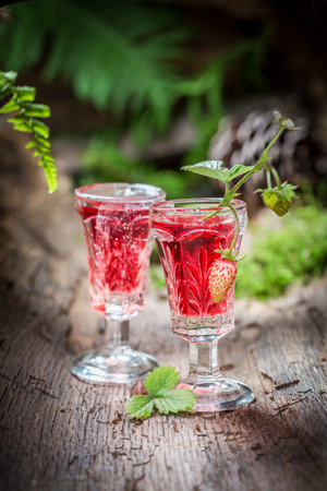 witchdoctor: Sweet liqueur with wild strawberry and alcohol in forest