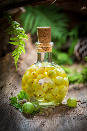 Sweet liqueur made of gooseberries and alcohol in forest Фото со стока