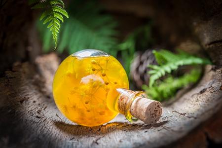 숲에 꿀과 린든으로 만든 달콤한 리큐어