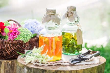 Healing herbs in bottles as natural medicine in summer Stock Photo