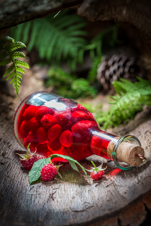 witchdoctor: Raspberries liqueur made of alcohol and fruits in forest