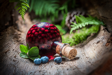 Homemade liqueur made of blueberries and alcohol in summer Banco de Imagens