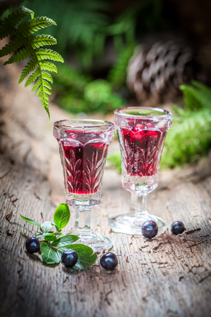 healer: Tasty liqueur made of alcohol and blueberries in forest