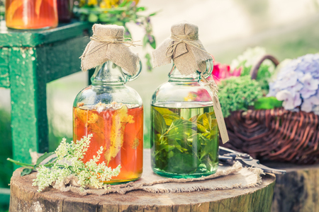 Healing herbs in bottles with herbs and alcohol in summer